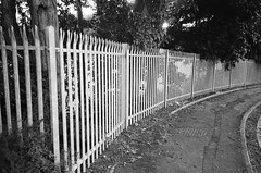 Railing (bigalid) Tags: film 35mm olympus af10 super ilford xp2 june 2019 bw dumfries