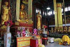 Guiyang, Hongfu temple, Buddha (blauepics) Tags: china guizhou province guiyang city stadt town houses häuser buildings gebäude architecture architektur old alte mountain berg historical historisch hongfu temple tempel religion buddhism buddhismus gold mount qianling buddha statue