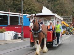 Douglas Horsedrawn Tram (deltrems) Tags: trammers horsedrawn tram public transport douglas promenade seafront man mann isleofman people