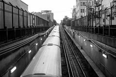 Always for Love (Thomas Hawk) Tags: america chicago cookcounty illinois usa unitedstates unitedstatesofamerica wickerpark bw subway traintracks fav10 fav25