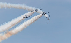 41e  Sanicole Airshow - september 15, 2019 - 1248 (Frederic_P.) Tags: sanicoleairshow sanicole airshow sigma150600contemporary breitlingjetteam jet formation breitlingpatrouille breitling l39albatros aero aerol39