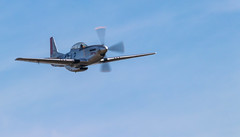 41e  Sanicole Airshow - september 15, 2019 - 1156 (Frederic_P.) Tags: airshow sanicole sanicoleairshow sigma150600contemporary mustang p51 p51mustang
