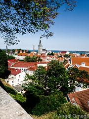 TallinnSkyline2 (sev7enth) Tags: tallinn estonia skyline landscape buildings trees red green brick wall samsung s9 sky leaves travel