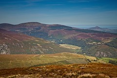 Scarr 3 (Kevin_Barrett_) Tags: ireland wicklow mountain scenic scenery landscape dramatic heather