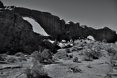 Windows South and North (Black & White, Arches National Park) (thor_mark ) Tags: archesnationalpark azimuth272 blackwhite blueskies canyonlands capturenx2edited centralcanyonlands colorefexpro coloradoplateau day6 desert desertlandscape desertmountainlandscape desertplantlife highdesert imagecaptureinmonochrome intermountainwest landscape largebushes layersofrock lookingwest naturalarch naturalarches nature nikond800e outside project365 rockformations sandstonefin sunny thespectacles thewindowstrail trees utahhighdesert utahnationalparks2017 windowsprimitivelooptrail windowssection ut unitedstates