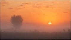 Good morning II (Rob Schop) Tags: sunrise streefkerk fog tele silhouet color mist sonya6000 sony70200fe nofilters hdr bracket lrcc zuidholland morning