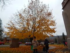 DSCN9950 (mestes76) Tags: 102718 duluth minnesota morganpark churches halloweencarnival halloween trickortreat trees leaves family kids jocelyn bean costumes