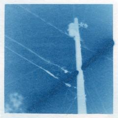 Power Pole - In Camera Photogram (Jack Ishlandt) Tags: cyanotype photogram incamera in camera traditional power electricity telephone pole lines sky suntransit astronomical blue alt alternative photography process