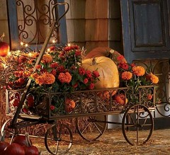 Great outdoor decorating 🍁 (pantheradeb) Tags: autumn fall decoration pumpkins