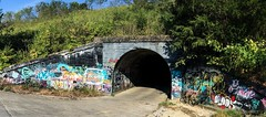 Culvert (cleotalk) Tags: rural graffiti bike bicycle scottcounty culvert kentucky