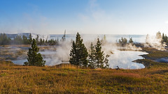 Sunrise at West Thumb (ValeTer_) Tags: nature atmospheric phenomenon natural landscape sky wilderness morning environment tree fog mist nikon d7500 national park usa wy wyoming yellowstone nps nikond7500 nationalpark yellowstonenationalpark