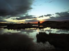 Photo of Rorschach Sunset