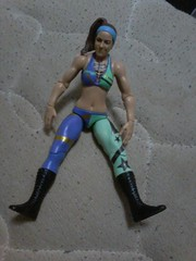 Look who came to join me (Appleeyeman) Tags: bayley wwe mattel figures