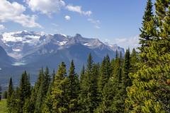 Mountains, photo from chair lift, Lake Louise, Alberta (Jim 03) Tags: lake louise banff national park alberta canadian rockies turquoise glacier peaks chateau ski chalet chairlift jim03 jimhoffman jhoffman jim wwwjimahoffmancom wwwflickrcomphotosjhoffman2013