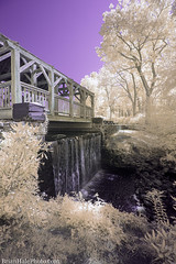 4-watermark (Brian M Hale) Tags: moore state park paxton ma mass massachusetts newengland usa brian hale brianhalephoto 590nm ir infrared outside outdoors long exposure breakthrough filters waterfall bridge covered