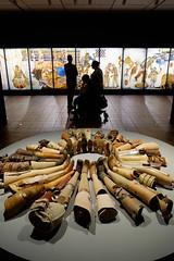 Legs (Håkan Dahlström) Tags: 2019 humlebæk modern art danmark denmark exhibition leg legs louisiana museum people krogerup capitalregionofdenmark f28 xt1 portrait uncropped 0ev normal 2019082412104555 raw 18mm iso1600 ¹⁄₆₀sek xf1855mmf284rlmois fujifilmxt1