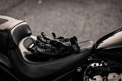 Un vent de liberté (2) (LACPIXEL) Tags: moto motorbike biker bike gant harley harleydavidson guante glove vent viento wind liberté libertad freedom route road carretera bitume asphalte asfalta bokeh sony flickr noiretblanc blancoynegro blackandwhite lacpixel