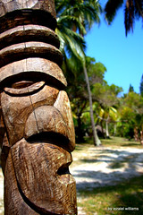 Tribal Essence IMG_2704 (iezalel7williams) Tags: sculpture wood landscape essence tribal coconuttrees isleofpines kunie land photography pinetrees planetearth photo beautiful nature outdoor holidays travel newcaledonia naturalplace tropical beauty blue sky plant sand white green grass view naturalelement nice high vibration light love happylife thinkpositive thankyou