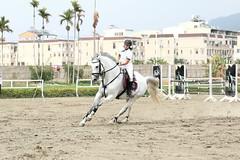 IMG_3505M 馬上英姿 (陳炯垣) Tags: sport outdoors horse riding taiwan 台灣 台中