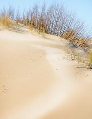 SunTouch-2.jpg (Klaus Ressmann) Tags: klaus ressmann omd em1 dune foleron grass landscape nature winter brushwood design flcnat klausressmann omdem1