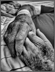 Mama, 17.04.1930 - 20.09.2019 (Beckerhenning) Tags: death dead tod tot trauer mama mutter hände