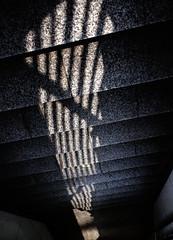 消失点 (vanishing point) (Dinasty_Oomae) Tags: fujifilm fujixf10 xf10 富士フイルム 東京都 東京 tokyo street 江東区 kotoku 階段 steps 影 shadow
