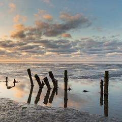 Mudflats (HoiteJouke.NL) Tags: westernieland groningen nederland mudflats before colour water nature sunset sky landscape outdoors reflection no people wad den andel hoitejouke