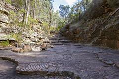 Fossil Ripple (oz_lightning) Tags: australia canon6d canonef1635mmf4lis mountremarkablenp sa southernflindersranges fossil geology landscape nature mountremarkablenationalpark southaustralia