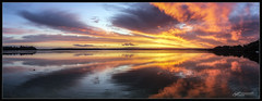 Paradise Beach Spring 2019 1 (itsallgoodamanda) Tags: amandarainphotography australia australianphotography australianlandscape australiassouthcoast australiaseastcoast shoalhaven seascape sea seaside southcoast seascapephotography stgeorgesbasin sky sunset sunsetphotography photography photoborder peaceful prettysunset prettybeach paradisebeach itsallgoodamanda jervisbayphotography jervisbay beach beautifulsunset spring2019 coastallandscape coastal colourfullandscape coast ocean landscape landscapecoast landscapephotography clouds cloudreflections calmocean