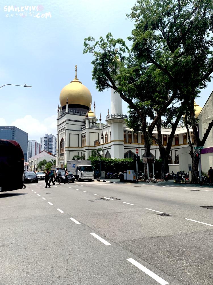 新加坡∥阿拉伯區甘榜格南(Kampong Glam)、蘇丹回教堂(Masjid Sultan)、哈芝巷(Haji Lane)、阿拉伯街(Arab Street)拍照最美的地方 6 48774227348 386f2a9e10 o