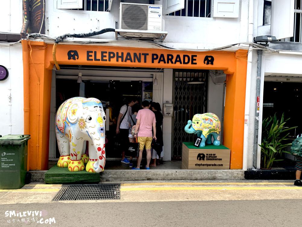 新加坡∥阿拉伯區甘榜格南(Kampong Glam)、蘇丹回教堂(Masjid Sultan)、哈芝巷(Haji Lane)、阿拉伯街(Arab Street)拍照最美的地方 24 48774228458 e69fe5ea6f o