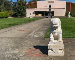 2019-09-out-west-day2-buddhas-phone-mjl-16 (Mike Legeros) Tags: buddha buddhas tenthousand 10000 ukiah ca california monastery monks