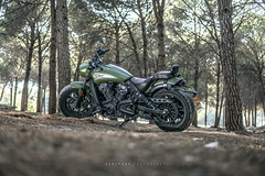 """""""The Bobber"""" (SaM FaST) Tags: motorcycle moto indian scout bobber custom cruiser beauty sony sonya6300 a6300 photography israel il outdoor outdoors light woods"""