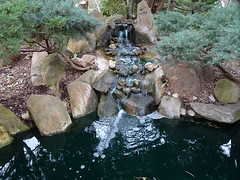 Miniature Waterfall (mikecogh) Tags: adelaide parklands japanesegarden waterfall pond miniature small flow rocks