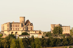 Chateau Duras and gatehouse, from a distance (grahamrobb888) Tags: d500 nikon nikkor nikond500 grahamrobbphotos 80400mm afs80400mm1456ed france holiday holidaysnaps hols architecture oldbuilding castle chateau telephoto