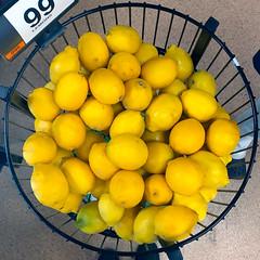 When life gives you  lemons... (Timothy Valentine) Tags: large lemon squaredcircle fruit 0919 2019 shopping tomarket whitman massachusetts unitedstatesofamerica