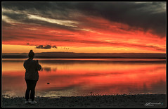 To the Light (itsallgoodamanda) Tags: amandarainphotography australia australianphotography australianlandscape australiassouthcoast australiaseastcoast shoalhaven seascape sea seaside southcoast seascapephotography stgeorgesbasin sky sunset sunsetphotography photography photoborder peaceful prettysunset prettybeach paradisebeach itsallgoodamanda jervisbayphotography jervisbay beach beautifulsunset spring2019 coastallandscape coastal colourfullandscape coast ocean landscape landscapecoast landscapephotography clouds cloudreflections calmocean