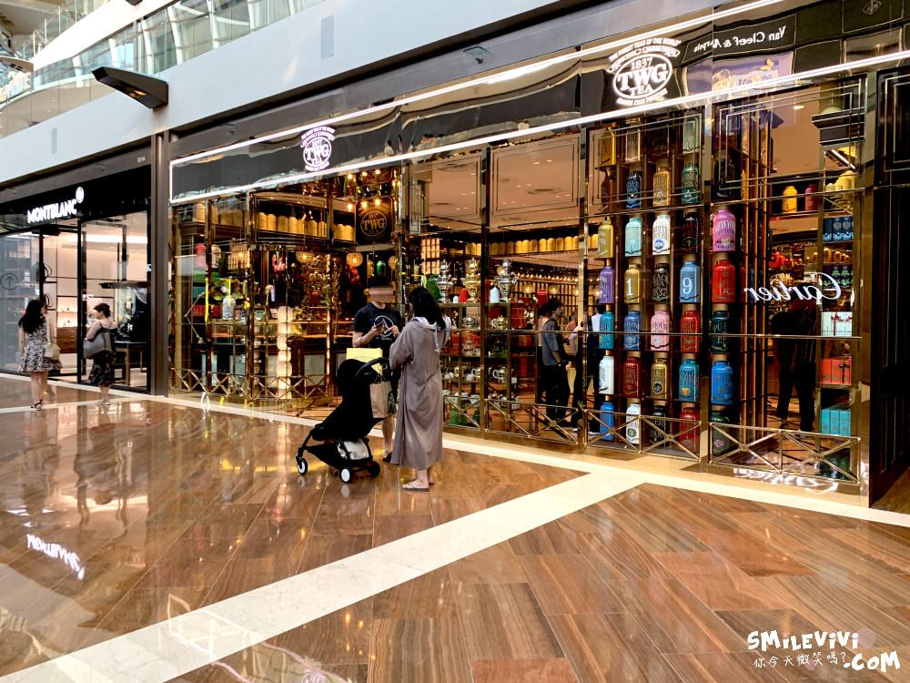 新加坡∥濱海灣金沙購物中心(THE SHOPPES AT MARINA BAY SANDS)賭場購物秀一次享受! 17 48774555606 c7910fba42 o