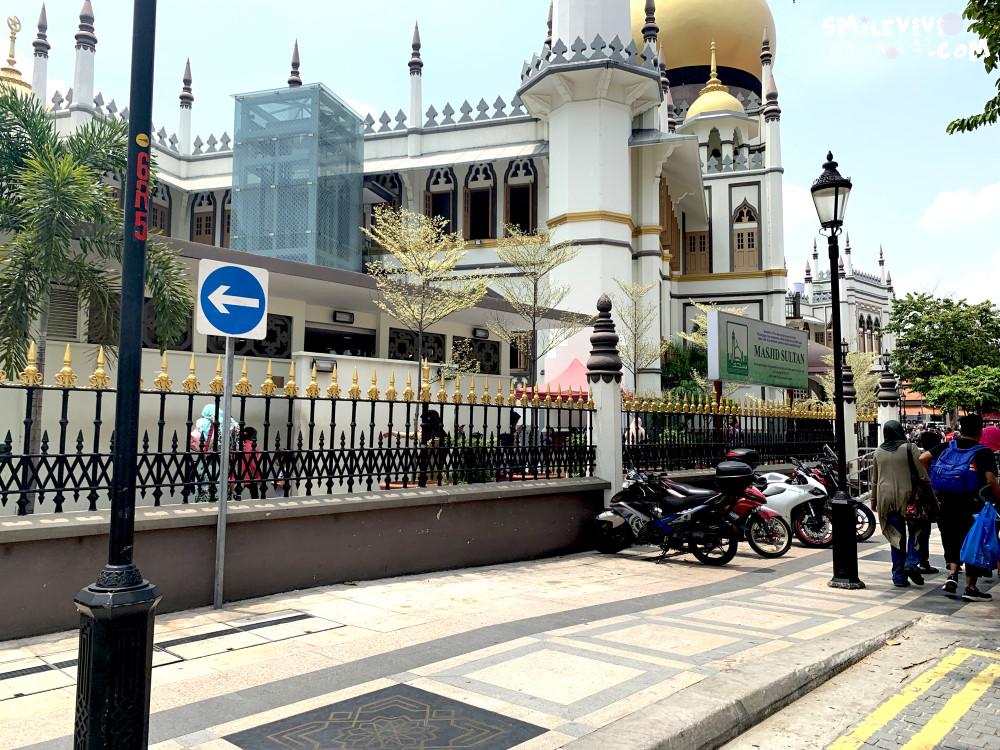 新加坡∥阿拉伯區甘榜格南(Kampong Glam)、蘇丹回教堂(Masjid Sultan)、哈芝巷(Haji Lane)、阿拉伯街(Arab Street)拍照最美的地方 43 48774571986 3a841c7aec o