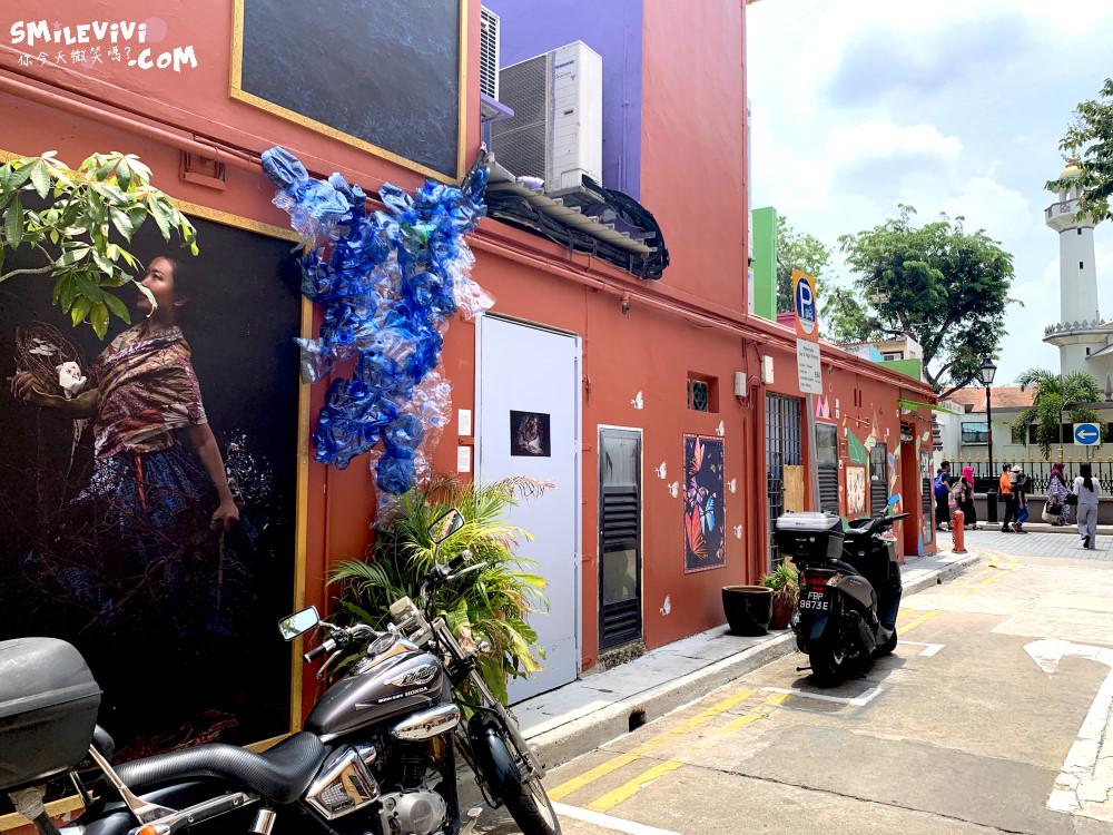 新加坡∥阿拉伯區甘榜格南(Kampong Glam)、蘇丹回教堂(Masjid Sultan)、哈芝巷(Haji Lane)、阿拉伯街(Arab Street)拍照最美的地方 37 48774574096 24b4daae89 o