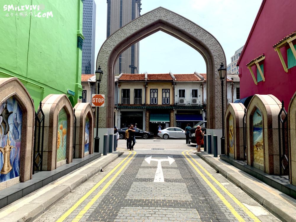 新加坡∥阿拉伯區甘榜格南(Kampong Glam)、蘇丹回教堂(Masjid Sultan)、哈芝巷(Haji Lane)、阿拉伯街(Arab Street)拍照最美的地方 41 48774574401 a4edd9ecdb o