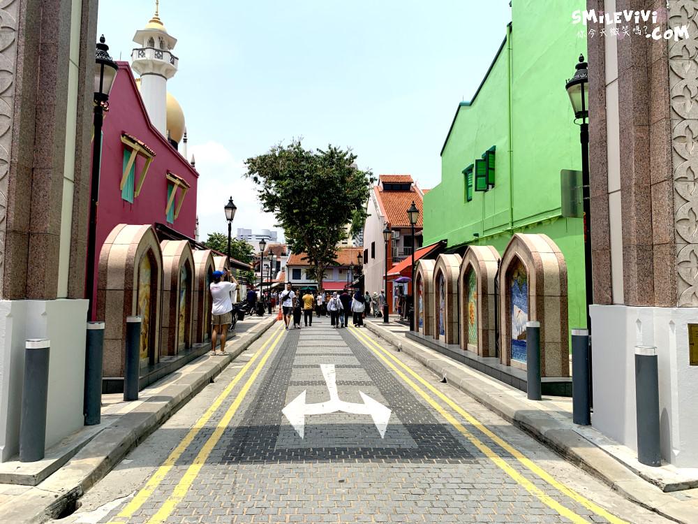 新加坡∥阿拉伯區甘榜格南(Kampong Glam)、蘇丹回教堂(Masjid Sultan)、哈芝巷(Haji Lane)、阿拉伯街(Arab Street)拍照最美的地方 42 48774574491 6732b3b421 o