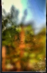 Natural art (Мaistora) Tags: abstract impression colour colourful guesswork imagination translucent textured outside garden window door canvas frame picture painting broadbrush wad blur texture illusion glow phone mobile samsung galaxy s8 android app snapseed