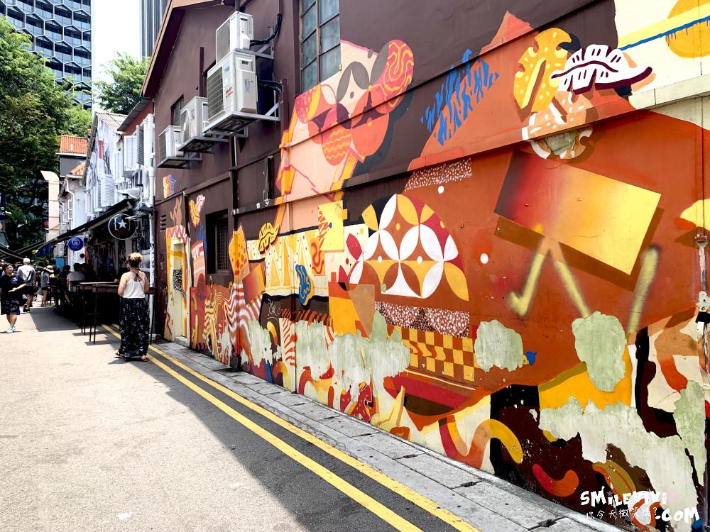 新加坡∥阿拉伯區甘榜格南(Kampong Glam)、蘇丹回教堂(Masjid Sultan)、哈芝巷(Haji Lane)、阿拉伯街(Arab Street)拍照最美的地方 11 48774765142 742975618d o