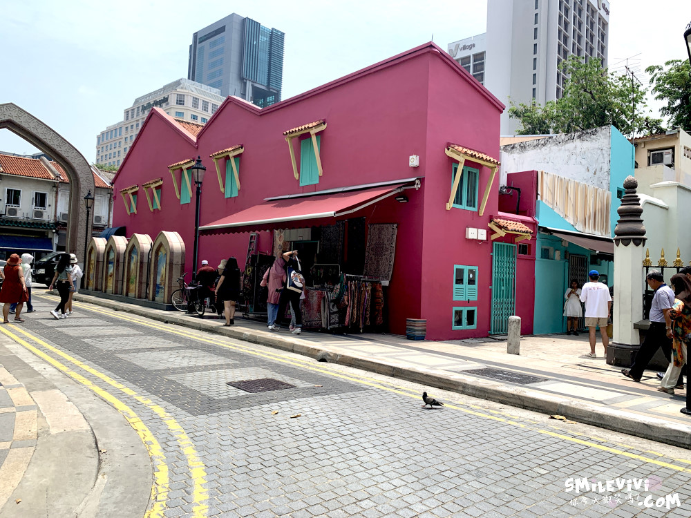 新加坡∥阿拉伯區甘榜格南(Kampong Glam)、蘇丹回教堂(Masjid Sultan)、哈芝巷(Haji Lane)、阿拉伯街(Arab Street)拍照最美的地方 40 48774766682 5c4c33c061 o