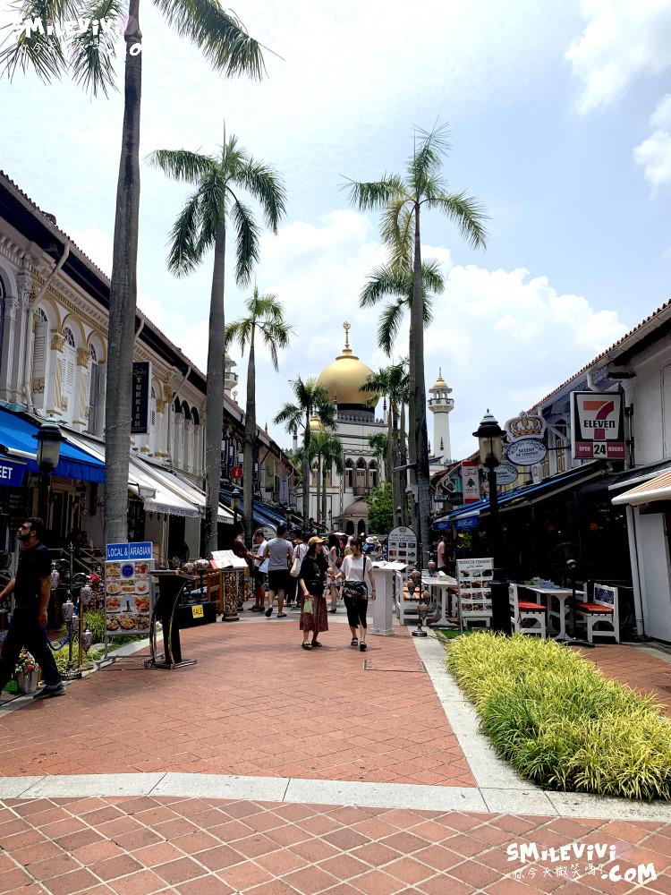 新加坡∥阿拉伯區甘榜格南(Kampong Glam)、蘇丹回教堂(Masjid Sultan)、哈芝巷(Haji Lane)、阿拉伯街(Arab Street)拍照最美的地方 48 48774767132 c701cc620c o