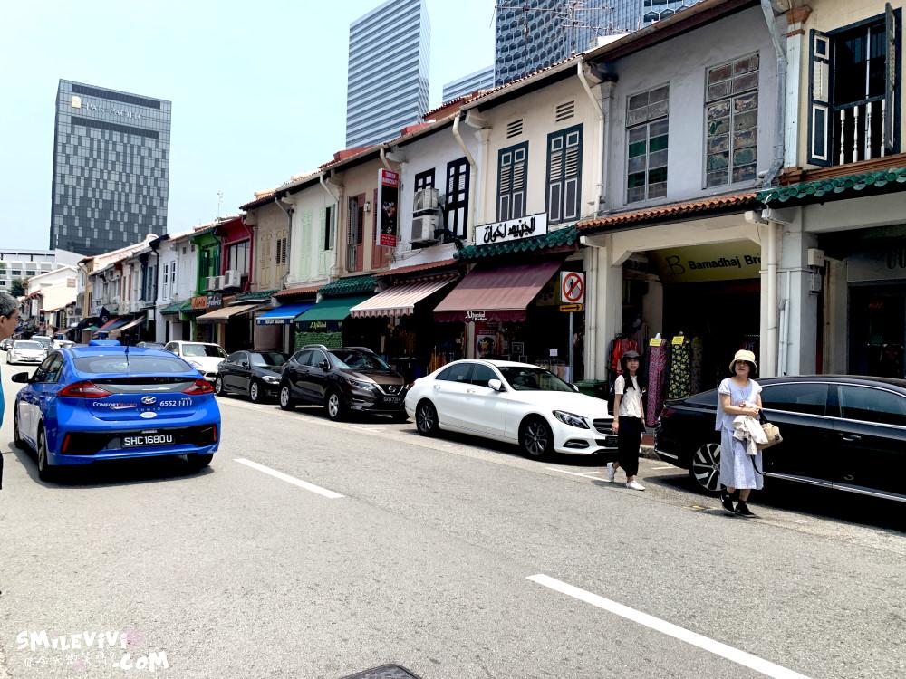 新加坡∥阿拉伯區甘榜格南(Kampong Glam)、蘇丹回教堂(Masjid Sultan)、哈芝巷(Haji Lane)、阿拉伯街(Arab Street)拍照最美的地方 56 48774767512 bf0922c56f o
