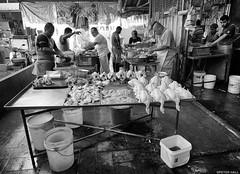 Chickens (peterphotographic) Tags: p7260661sefexedwm chickens olympus em5mk2 microfourthirds mft ©peterhall georgetown penang malaysia seasia asia pulautikus market food fowl shop shopping nik silverefexpro2 blackandwhite blackwhitephotos bw monochrome streetphotography candid