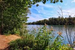 Lakeside (ruedigerdr49) Tags: lake natureoutdoorgreen blue germany national water landscape waterscape
