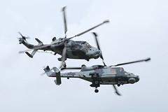 Royal Navy - ZZ515 & ZZ519 - Farnborough Airport (FAB/EGLF) (Andrew_Simpson) Tags: zz515 zz519 agustawestlandwildcat agustawestlandaw159wildcat agustawestland agusta westland aw159wildcat aw159 wildcat royalnavy rn uknavy naval navy militaryhelicopter military helicopter helicopters display farnboroughairport fanrboroughinternationalairport farnboroughinternational farnboroughairshow farnboroughinternationalairshow farborough fab eglf hampshire airshow airdisplay fia fia16 fia2016 uk aircraft aviation avgeek avporn aviationgeek aviationporn planepic planephoto planes plane aircraftpic airplane aeroplane unitedkingdom gb greatbritian england